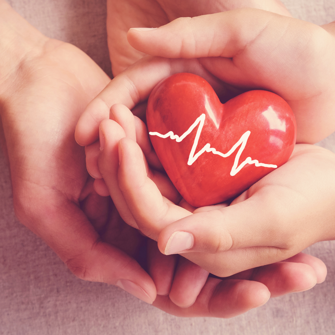 Take Care of Your Heart – Trying Out Cardiovascular Exercises